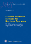 Efficient Numerical Methods for Non-local Operators