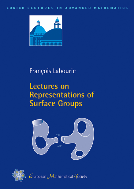 Lectures on Representations of Surface Groups